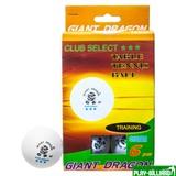 Комплект мячей для настольного тенниса «Club Select***», 6 шт./компл., интернет-магазин товаров для бильярда Play-billiard.ru