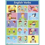 Глаголы. English Verbs. Наглядное пособие по английскому языку. Наглядные пособия. Плакаты