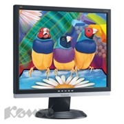 Монитор 19 Viewsonic VA926/1280x1024/5ms/VGA/DVI/black-silver