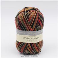 Пряжа Stripy цвет 563, 210м/50г, Casagrande