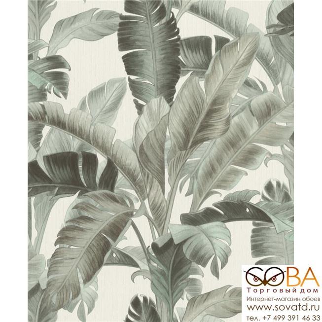 Обои Rasch Barbara Home Collection II 536676 купить по лучшей цене в интернет магазине стильных обоев Сова ТД. Доставка по Москве, МО и всей России