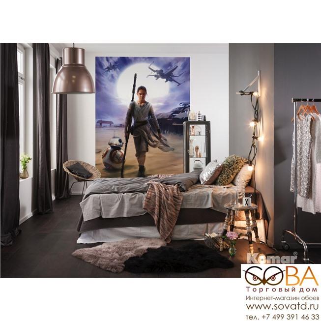 Фотообои Komar STAR WARS Rey артикул 4-448 размер 184 x 254 cm площадь, м2 4,6736 на бумажной основе купить по лучшей цене в интернет магазине стильных обоев Сова ТД. Доставка по Москве, МО и всей России
