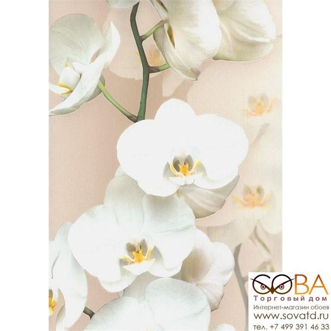 Обои Andrea Rossi Pianosa 54169-5 купить по лучшей цене в интернет магазине стильных обоев Сова ТД. Доставка по Москве, МО и всей России