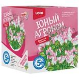 Набор для выращивания растений Lori Юный Агроном Душистый горошек Р-005